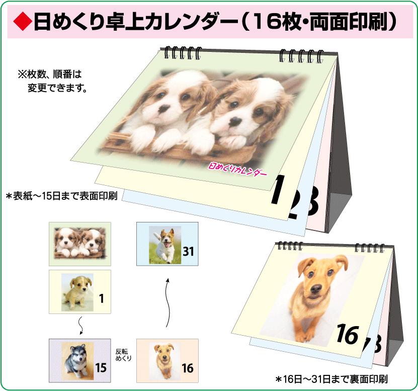 日めくり卓上カレンダー(16枚・両面印刷)