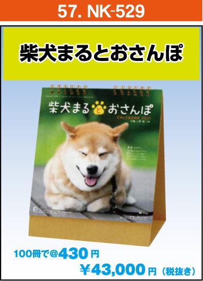 57.NK-529:柴犬まるとおさんぽ